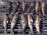 images2.jpg.Alquiler velero en el Jónico. Que comer en las tabernas